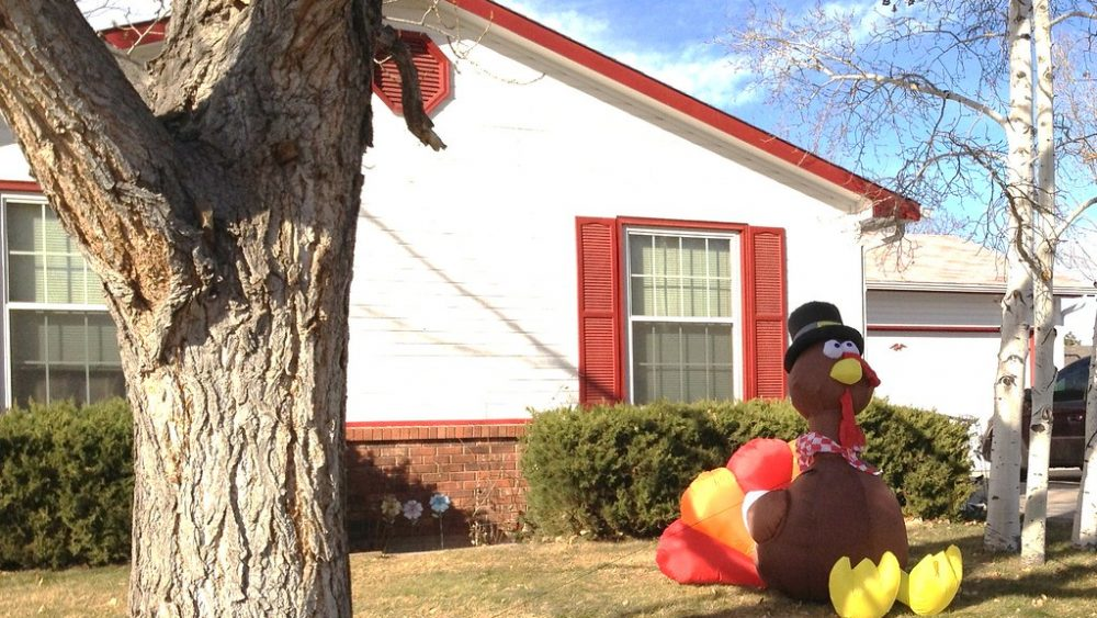 Image of a big inflatable turkey on someone's lawn infront of a white house